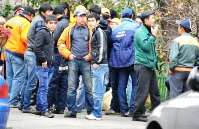 трудовые мигранты, баллы вместо квот, балльная система для мигрантов