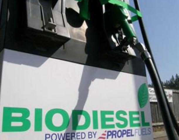 этанол, биодизель, биодизельное топливо, альтернативное топливо, как изготовить в домашних условиях этанол, изготовление этанола, изготовление биодизеля, изготовить биодизельное топливо самостяотельно, изготовить этанол самостоятельно, как сэкономить на бензине, сырье для изготовления этанола, сырье для изготовления биодизеля, где найти сырье для изготовления этанола, разрешено ли изготавливать суррогатное топливо