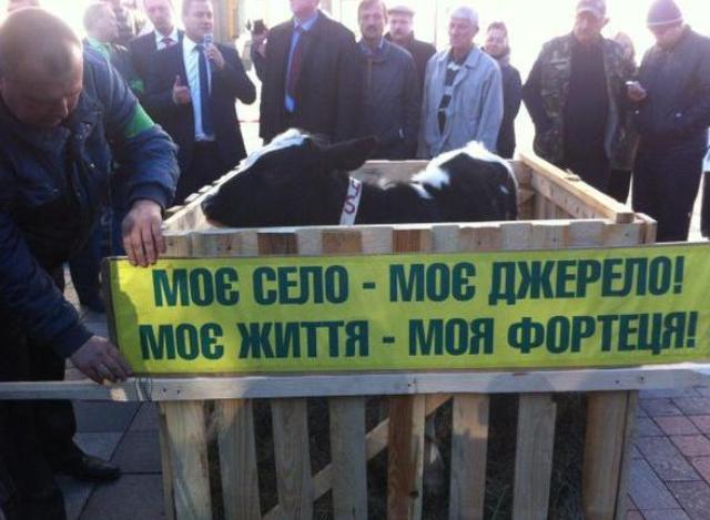 мвф прижал украину, мвф требует от украины возврат долга, украина отмена моратория на продажу земли .украина земля