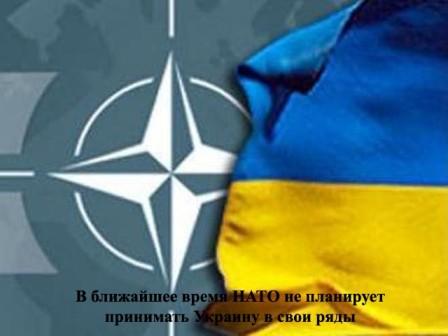 украина нато, украина вступила в нато, украина входит в нато