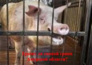 swine flu, swine flu in Russia