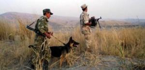боевики талибан на границах Таджикистана, захват Кундуз, боевики игил, боевики ИГ, боевики исламского государства движение